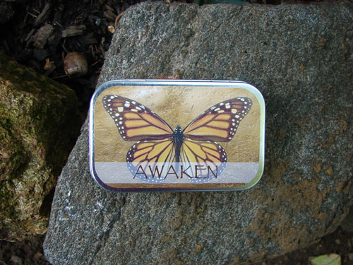 Awaken Butterfly Mint Tin