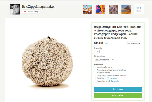Eric Zippe Photography Screen Shot from Etsy Shop